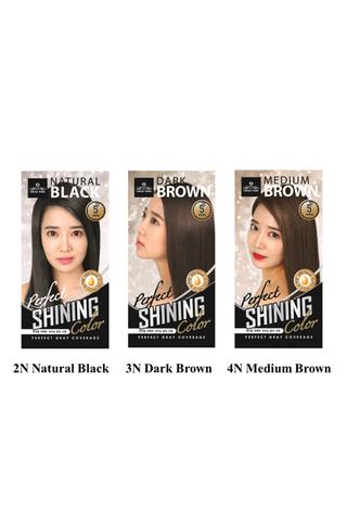 Feelre Korea Perfect Shining Colour - Perfect Gray Coverage